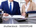 bookkeeper or financial... | Shutterstock . vector #533559148