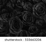 dark roses background. greeting ... | Shutterstock . vector #533663206