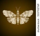 night moth vector illustration | Shutterstock .eps vector #533703769