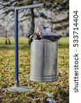 full trash can | Shutterstock . vector #533714404