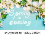Small photo of Spring is coming text , spring blossom twigs with bokehlighting on blue turquoise background, top view, border. Springtime concept