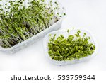 Small photo of Home grown microgreens - broccoli sprouts isolated on white background. Sprouts are source of myrosinase enzyme and sulforaphane as anticancer treatment.