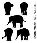 baby elephants   vector | Shutterstock .eps vector #533761318