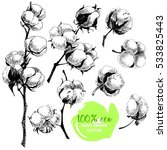 vector hand drawn set of cotton ... | Shutterstock .eps vector #533825443