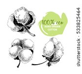 vector hand drawn set of cotton ... | Shutterstock .eps vector #533825464