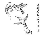 Vector Image Of An Hummingbird...