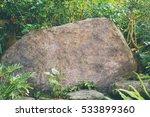 Rock Stone In Green Jungle
