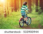 Child On A Bicycle In The...
