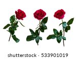 Stock photo red roses isolated white background 533901019