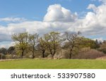 Small photo of Walking on farmland in the Essex countryside near the village of Abridge in Spring.