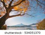Autumn Season And Mountain Fuj...