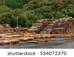pine timber stacked at lumber... | Shutterstock . vector #534072370