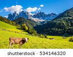 on the green grass hillside... | Shutterstock . vector #534146320