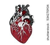 blooming anatomical human heart.... | Shutterstock . vector #534270934