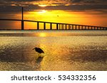 great blue heron silhouetted at ... | Shutterstock . vector #534332356