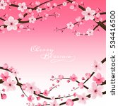 cherry blossom realistic vector ... | Shutterstock .eps vector #534416500