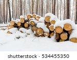 Wooden Log Store Under Snow In...