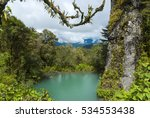magdalena lagoon in... | Shutterstock . vector #534553438