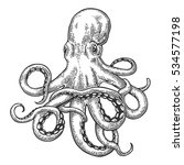 Octopus. Black Engraving...