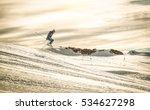 professional skier performing... | Shutterstock . vector #534627298