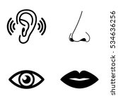 the sense organs icons vector... | Shutterstock .eps vector #534636256