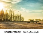 stunning frosty and misty rural ... | Shutterstock . vector #534653368