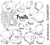 set of hand drawn vector fruits ... | Shutterstock .eps vector #534689059