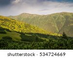 photo of greenery and mountains ... | Shutterstock . vector #534724669