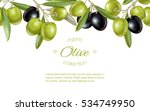 vector horizontal banner with... | Shutterstock .eps vector #534749950