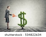 young attractive businesswoman... | Shutterstock . vector #534822634