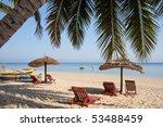 Palm Tree On The Beach ...