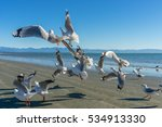 Flying Seagulls On The Beach I...