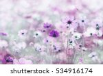 blurred of cosmos flowers with... | Shutterstock . vector #534916174