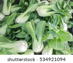 group of organic bok choy on...   Shutterstock . vector #534921094