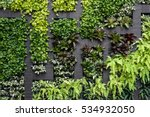 green wall  eco friendly... | Shutterstock . vector #534932050