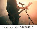 silhouette of bass guitar...   Shutterstock . vector #534943918