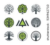 Stock vector vector tree fir tree wood oak set of logo design elements badges labels and logotype 534962710