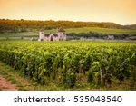 Chateau With Vineyards ...