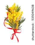 close up shot of mimosa flowers....   Shutterstock . vector #535049638