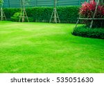 green lawn  the front lawn for... | Shutterstock . vector #535051630
