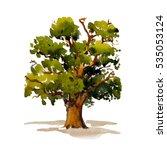 green tree oak isolated on...   Shutterstock . vector #535053124