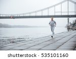 full length man in gray... | Shutterstock . vector #535101160