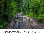 Forest Routes On The Roads In...