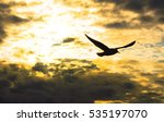 Seagull Flying At Sunset Sky ...