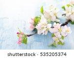 Apple Tree Flowers Blue Rustic...