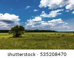 beautiful summer landscape in... | Shutterstock . vector #535208470
