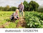 farming  gardening  agriculture ...   Shutterstock . vector #535283794