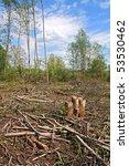 chopping wood | Shutterstock . vector #53530462