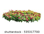 Pink Flower Bush Tree Isolated...