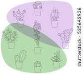 cactus vector illustrations.... | Shutterstock .eps vector #535643926